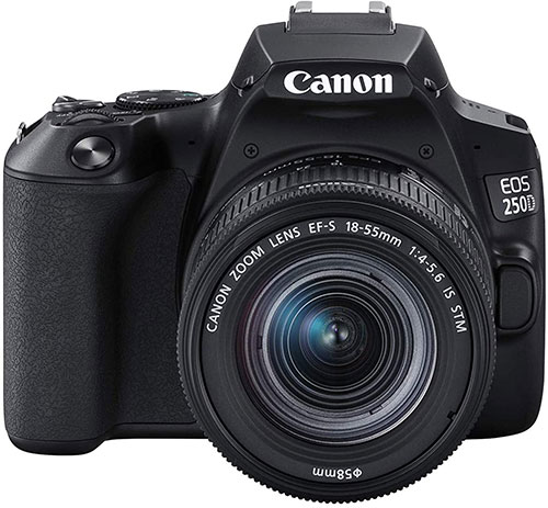 best DSLR camera for beginners Canon EOS 250D